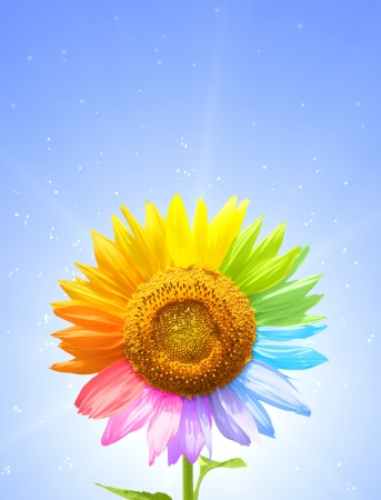 Petals of a sunflower painted in different colors Stock Photo