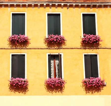 Six windows with geranium Stock Photo - 16075117