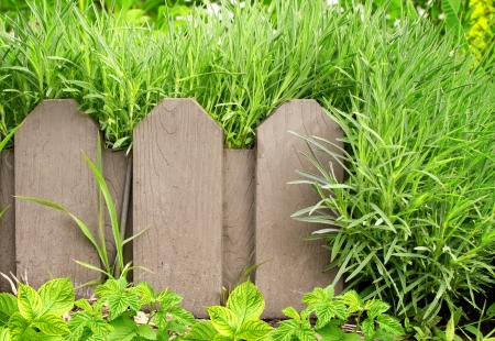 Summer background with old wooden fence and green grass Stock Photo - 16332055