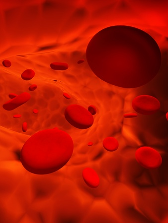 body blood: Many red erythrocytes, floating on an artery