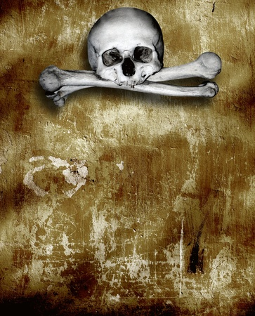 Grunge background with human skulls and bones Stock Photo - 16550245