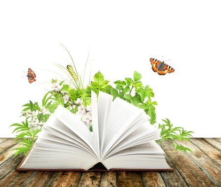 beginning: Book of nature. Isolated over white Stock Photo