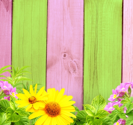 Summer background with old wooden fence, flower and green leaves photo