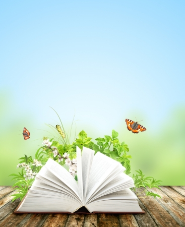 new books: Book of nature on blue background Stock Photo