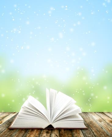 come�o: Livro sobre pranchas de madeira