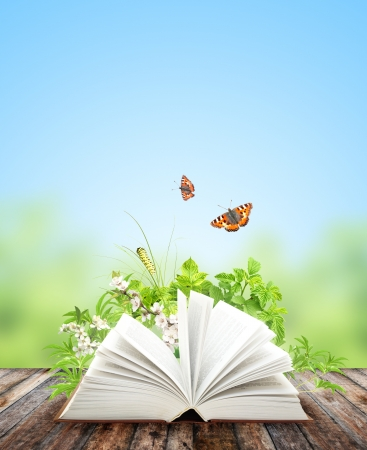 Book of nature on green background photo