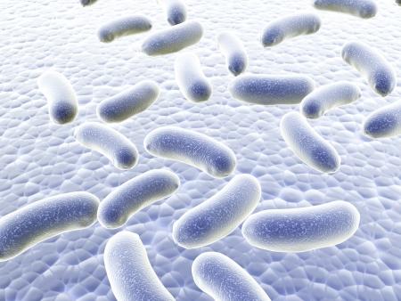 병원체 박테리아의 식민지 - 3d 렌더링