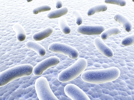 Colony of pathogen bacteria - 3d render photo