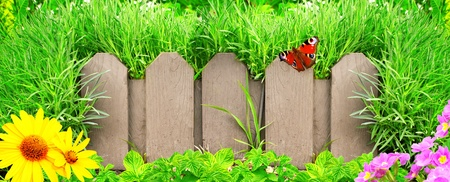 Summer background with old wooden fence and green grass photo