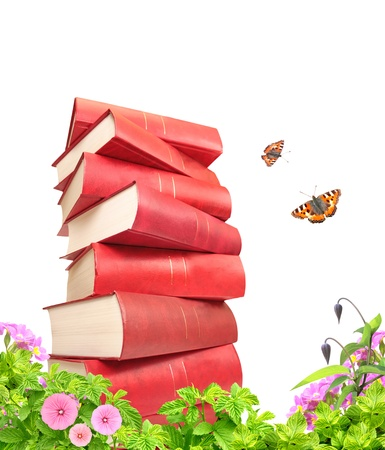 literary: Books, flowers and butterflys. Isolated over white Stock Photo