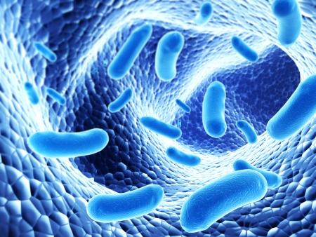 Kolonie van pathogeen bacterias - 3d render