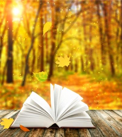 libros abiertos: Libro de la naturaleza en el bosque de oto�o