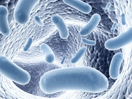 Kolonie van pathogene bacteriën - 3D render
