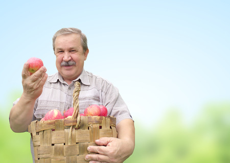 Senior man, harvesting an apples photo