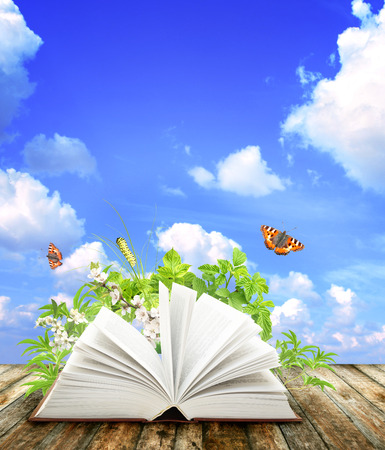 Book of nature on blue background photo