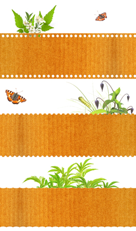 Collection of nature banners. Isolated on white background photo