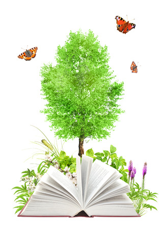 Book of nature. Isolated on white background photo