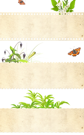 Collection of nature banners. Isolated  photo