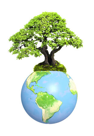 best shelter: Earth and tree. Isolated on white background. Elements of this image furnished by NASA