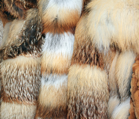 Row of many fur coats of different colors
