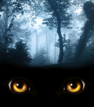 dark eyes: Dark series - a look from darkness