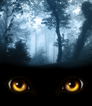 Donkere serie - een blik van duisternis