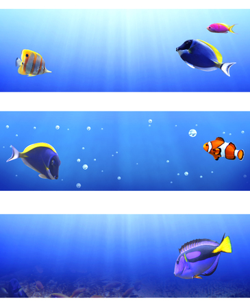 clown tang: Collection of banners with beautiful tropical fish