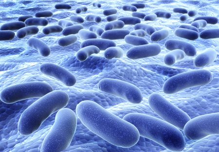 bacteria cell: Colony of pathogen bacteria - 3d render