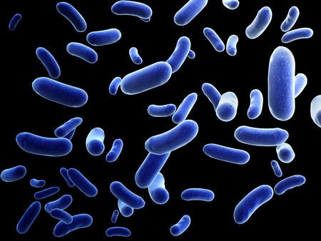 bacterias: Colonia de bacterias pat�genas - 3d