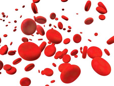 erythrocyte: Many red erythrocytes. Isolated on white background