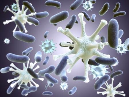 bacterias: Virus pat�genos y bacterias