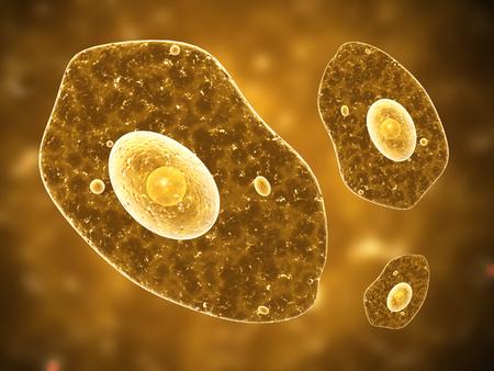 amoeba: Amoeba su sfondo marrone. Rendering 3D