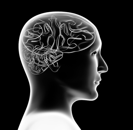 visual perception: Transparent 3d head of the person and brain. Isolated on black background Stock Photo