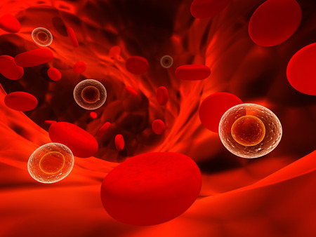blood cells: Viruses floating among erythrocytes Stock Photo
