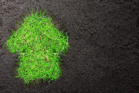 soil conservation: Eco background with soil and house of green grass