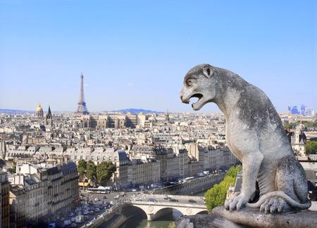 gargouille: Gargouille surplombant Paris sur Notre Dame de Paris et de Seine, France Banque d'images