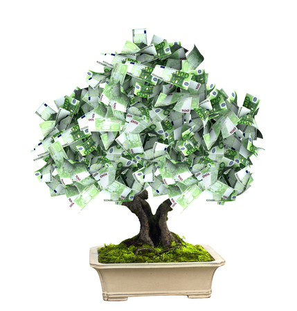 miracle tree: 3d money tree with euro banknotes. Isolated on white background Stock Photo