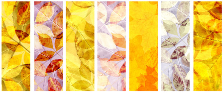 lilac background: Collection of grunge banners with autumn leaves and paper texture