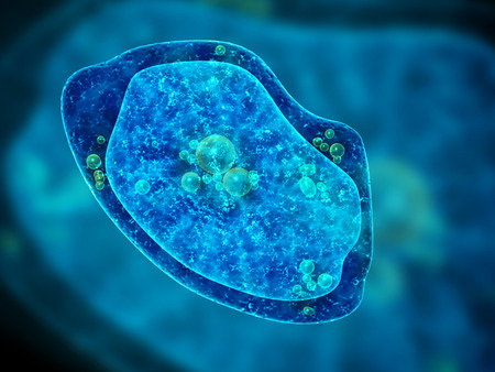 ameba: Amoeba sobre fondo azul. 3d Foto de archivo
