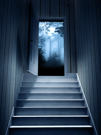 dark basement stairs. Steps leading from a dark basement to open the door  3d render photo Leading From A Dark Basement To Open The Door Render