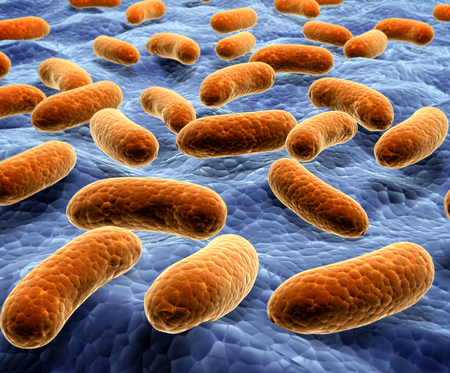bacteria cell: Pathogen bacteria on the surface.  3d render Stock Photo