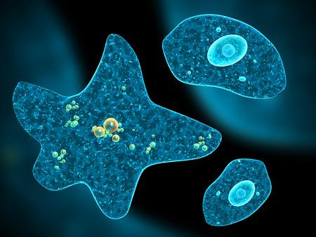 ameba: Amebas diferentes en el fondo abstracto. 3d Foto de archivo