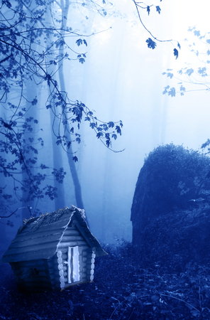 dark elf: Small wooden house and mysterious landscape of foggy forest Stock Photo