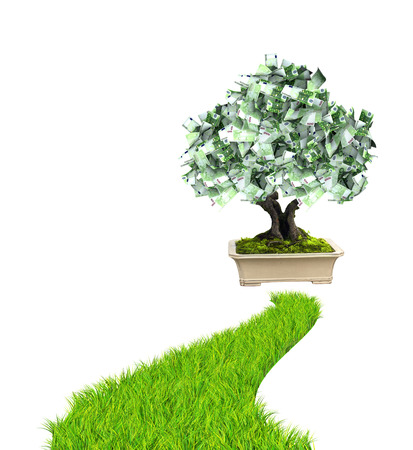 bankroll: 3d money tree euro banknotes and road with green grass. Isolated on white background Stock Photo