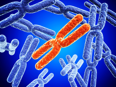 Red and blue X chromosome on abstract background