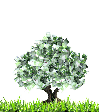 success in business: 3d money tree with euro banknotes and green grass. Isolated on white background Stock Photo