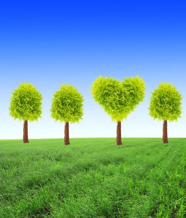 forme: arbre en forme de coeur sur le champ vert sur fond de ciel bleu Banque d'images