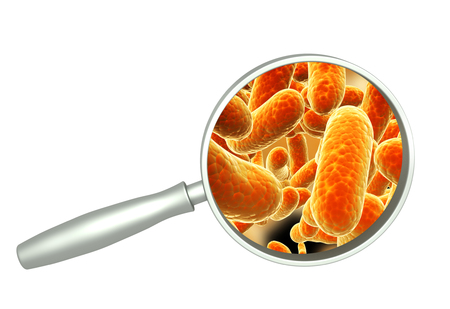 Magnifying glass and colony of pathogen bacteria. Isolated on white background. 3d render