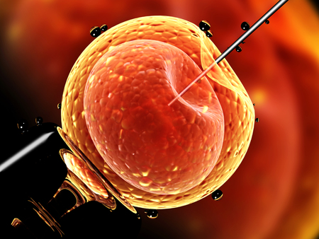 zygote: Cell injection - artificial insemination. Needle puncture the cell membrane. 3d render Stock Photo