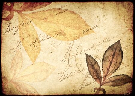 old paper: Grunge vintage background with old paper texture, leaf and inscription